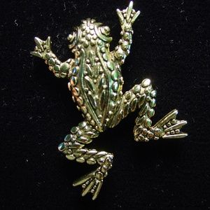 🆕 'Textured FROG' Pin Brooch